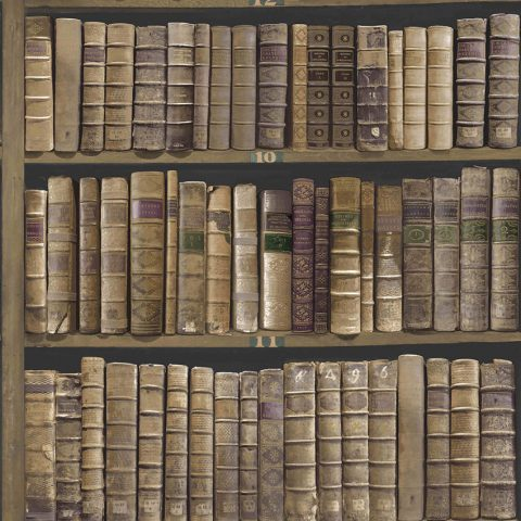 View Trinity Library – Mahogany